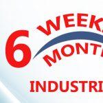 6 weeks industrial training